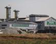 Türkşeker: Çiftçilerin ürünleri bölgedeki borsa fiyatlarına göre değerinde alınacak